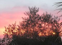 Ciel Saint-Meloir-des-Ondes 35350 Joli coucher de soleil