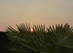 Ciel Lafitte-Vigordane 31390 Levé de soleil
