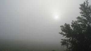 Brouillard a 8h25