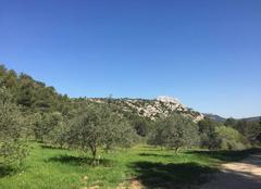 Climat Le Tholonet 13100 La provence