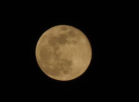 La Lune rose n'est pas si rose