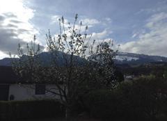 Ciel La Roche-sur-Foron 74800 Météo clémente