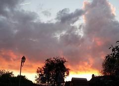 Ciel Mouettes 27220 Sunset