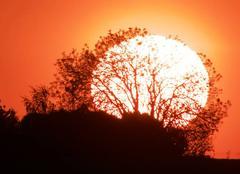 Ciel Saint-Etienne-de-Brillouet 85210 Coucher de soleil en Vendée