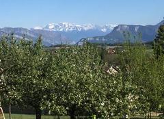 Insolite Apprieu 38140 Vue des Alpes d'en haut de la Robertiere