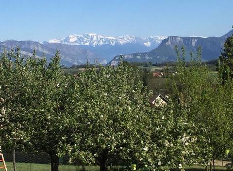 Vue des Alpes d'en haut de la Robertiere