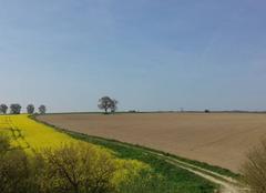 Ciel Forceville-en-Amienois 80560 Du soleil et 13°C !