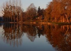 Faune/Flore Varzy 58210 L'automne