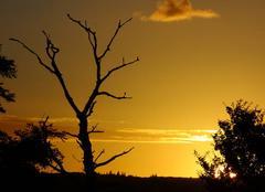 Ciel Montbron 16220 Coucher soleil charentais