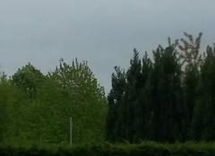 Ciel Faches-Thumesnil 59155 Gris et pluvieux