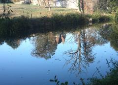Ciel Montbron 16220 Reflet sur la Tardoire