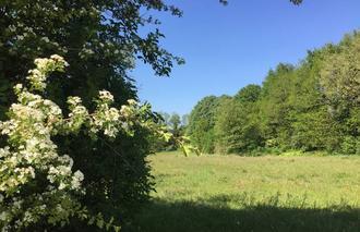 Ciel Mours-Saint-Eusebe 26540 Campagne sous grand ciel bleu et vent