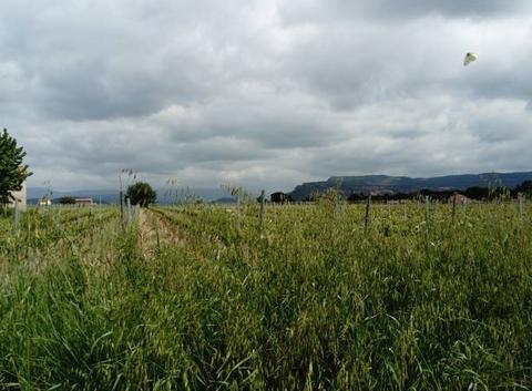 Beau passage nuageux en Provence