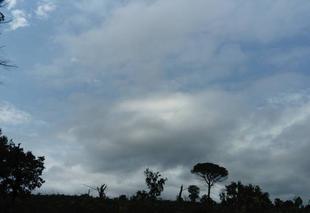 Ciel La Motte 83920 Douceur dans la garrigue le ciel s'éclaircit