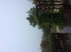 Pluie Puget-Ville 83390 Pluie et brouillard