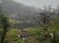 Neige Erce 09140 Neige au printemps