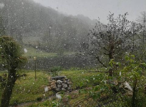 Neige au printemps
