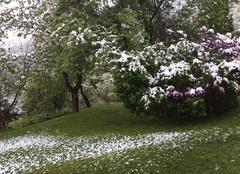 Neige Saint-Jean-de-Maurienne 73300 Lilas enneigé