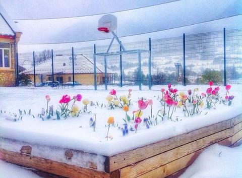 La cour d'école sous la neige