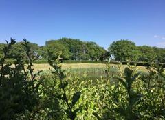 Ciel Mours-Saint-Eusebe 26540 Campagne verte sous ciel bleu