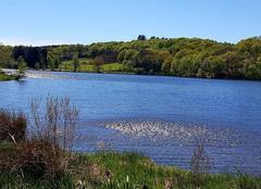 Climat Bessines-sur-Gartempe 87250 Lac Bessines