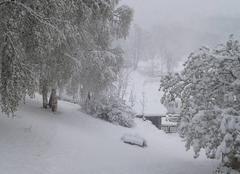 Neige Saint-Andre 73500 Réveil sous la neige
