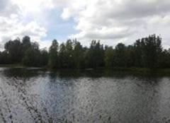 Faune/Flore Loures-Barousse 65370 Lac la barousse