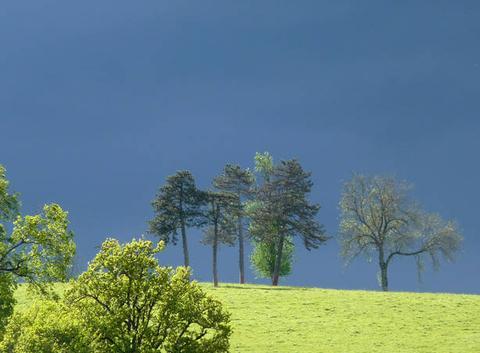 Ciel menaçant sur le Charolais-Brionnais