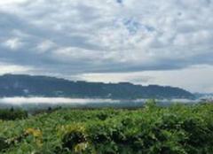 Nuages Saint-Sauveur 38160 Mer de nuages