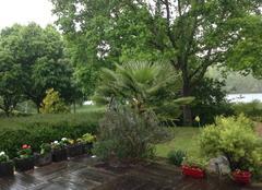 Orage Saint-Fargeau-Ponthierry 77310 Chemin de halage