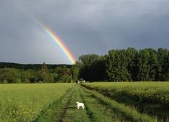 Ciel Molineuf 41190 Apres l'orage !