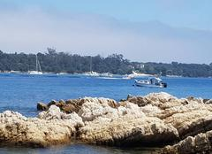 Mer Cannes 06400 île de sainte honorat