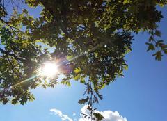 Ciel Mison 04200 Jeu de soleil