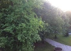 Chaleur Champagnole 39300 Belle fin de journée dans le Jura