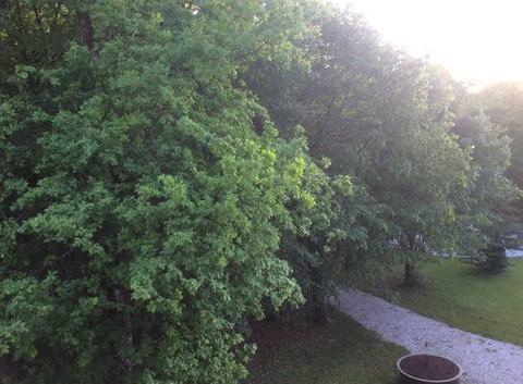 Belle fin de journée dans le Jura