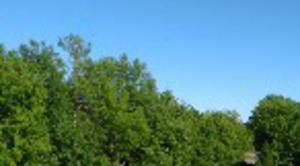 Ciel Tourlaville 50110 Grand soleil à tourlaville