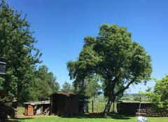 Climat Mesnil-Verclives 27440 Sun sun