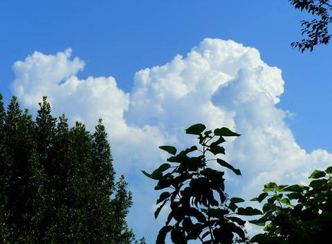 Que nous annonce ce nuage ? De la pluie ?