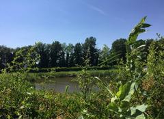 Ciel Mours-Saint-Eusebe 26540 Ciel azuréen et chaleur cet après-midi