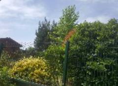 Ciel Amboise 37400 Repas en terrasse