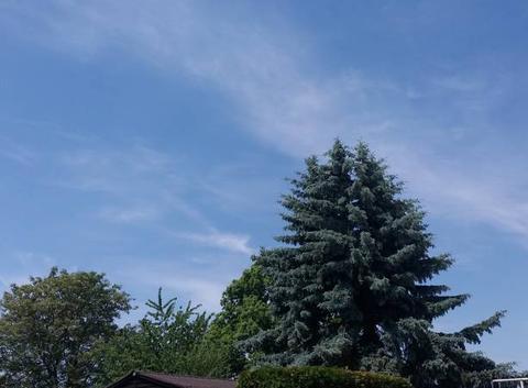 C'est l'été sur l'Alsace.