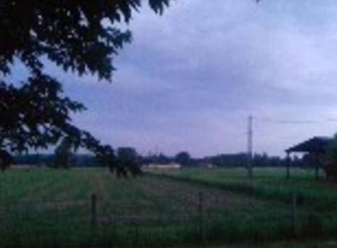 Calme avant la pluie