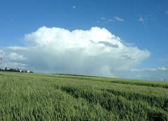 Nuages Favieres 28170 Nuage de pluie