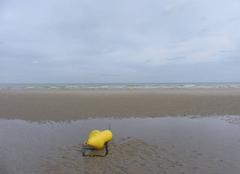 Mer Dunkerque 59140 Mer du Nord - plage de Dunkerque-Malo les Bains- ce matin 08/06