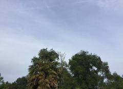 Nuages Castelnau-de-Medoc 33480 Ciel
