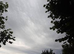 Ciel Riaille 44440 Fin d'après midi après journée ensoleillée