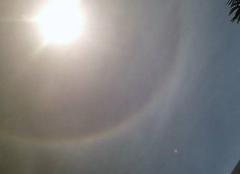 Insolite Nice 06000 Halo arc-en-ciel autour du soleil