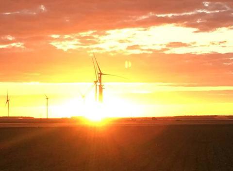 Magnifique couché de soleil sur les nouvelles éoliennes