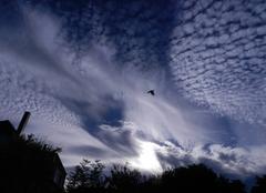 Nuages Illkirch-Graffenstaden 67400 étranges nuages