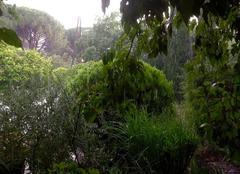 Orage Nîmes 30000 Un chouette orage